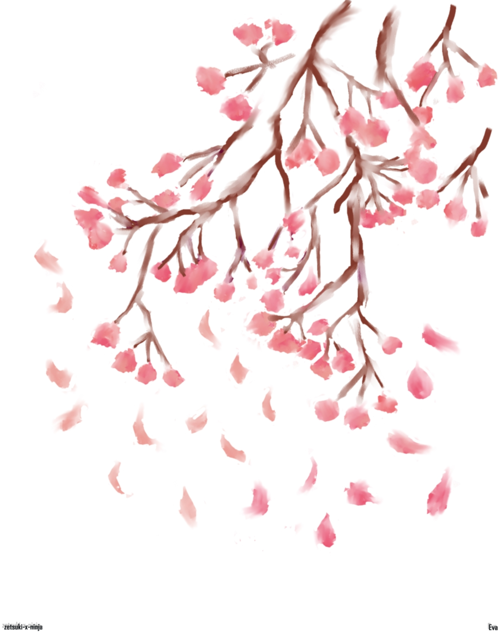 Cherry blossom wall decal for nursery highest quality pictures