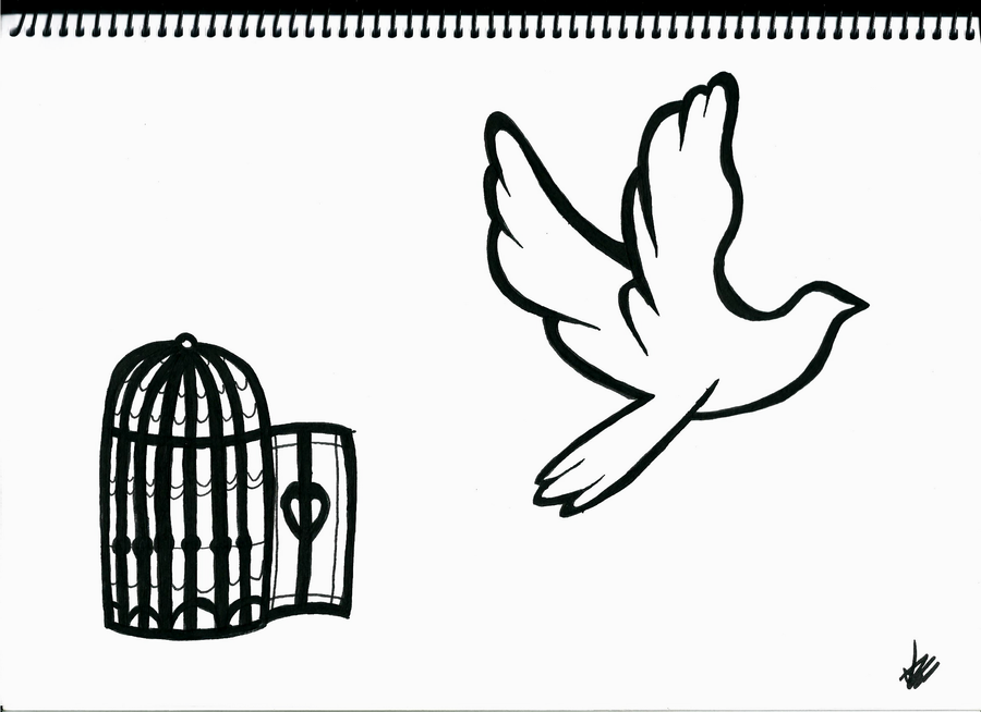 Bird and Cage by MrOrangeCreamsicles on DeviantArt