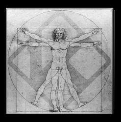 Kodi Vitruvian Man Da Vinci