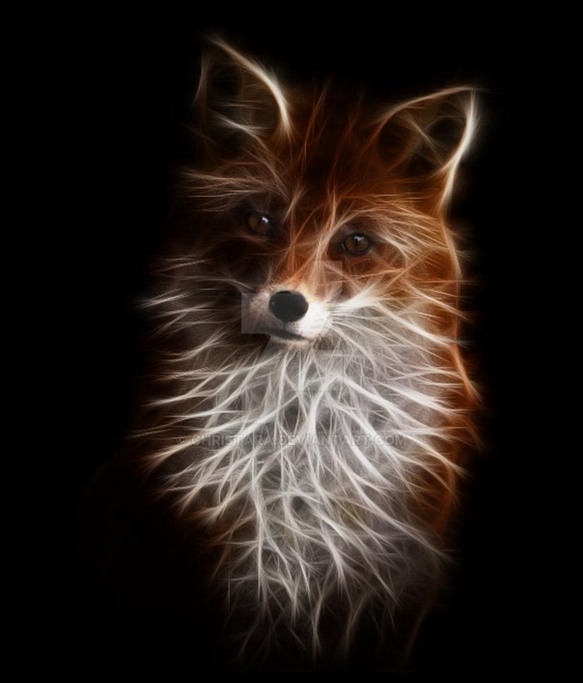 Foxy Fractal by christara