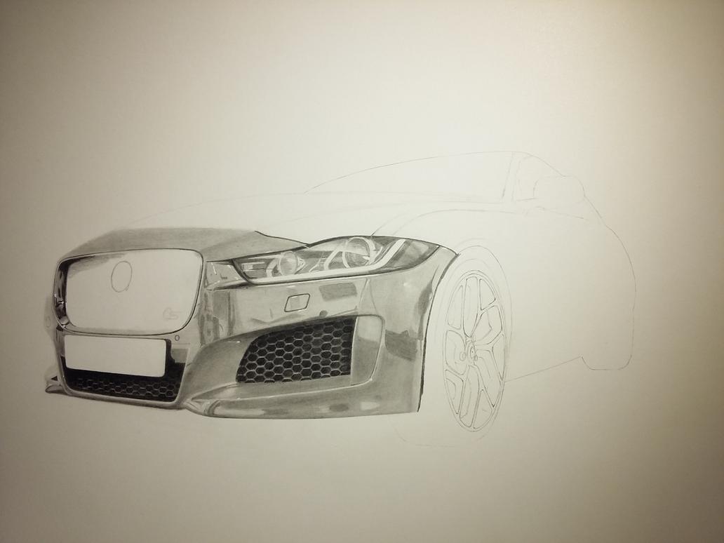 Jaguar pencil drawing ( work in progress) by SARGY001