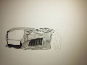 Jaguar pencil drawing ( work in progress)
