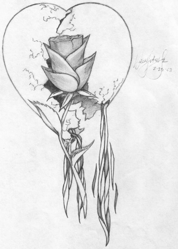 Bleeding Heart Sketch Bleeding Heart And Rose by