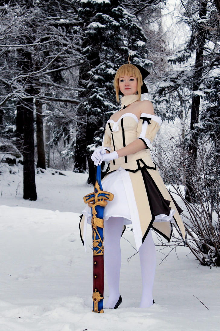 Saber Lily - Fate/Unlimited Codes by Hansku