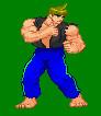 Street Fighter concept by goldenEden