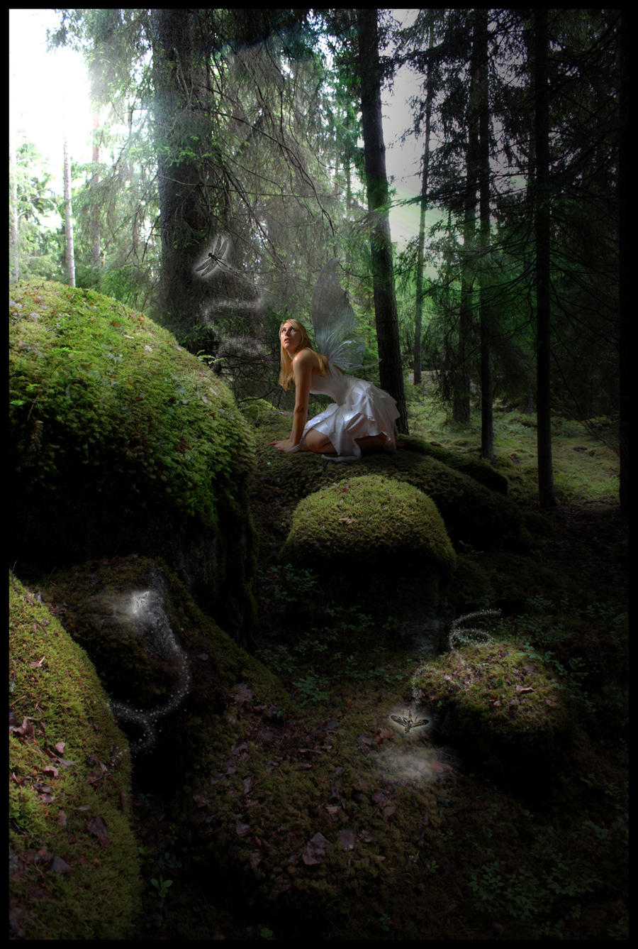 Forest Fairy by smeghead1976