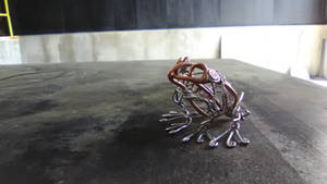 Frog side view