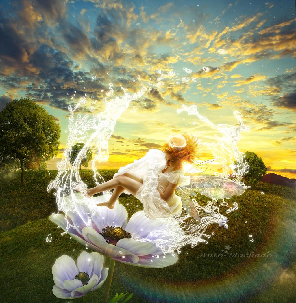 My Dew Fairy