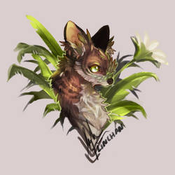 flowerycanine