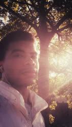 Sunlight Halo
