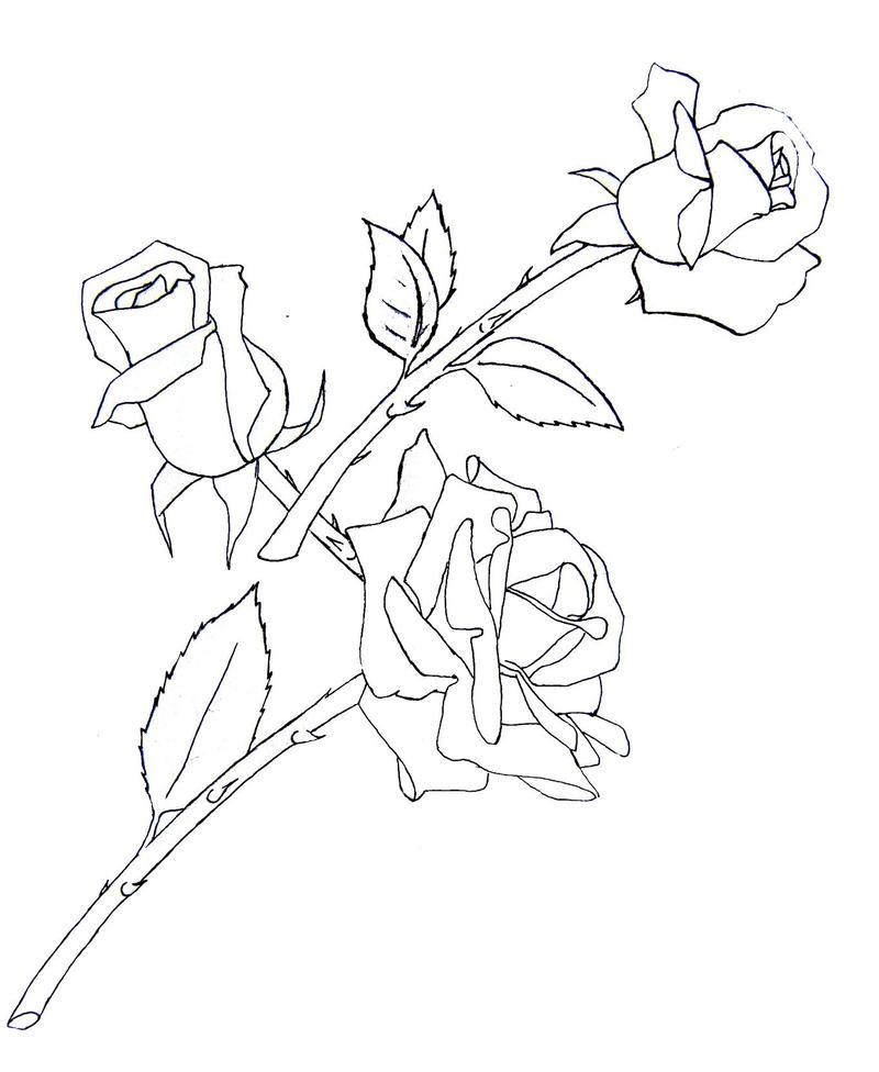 Line Art Rose Tattoo : Rose tattoo draft by ladysiubhan on deviantart