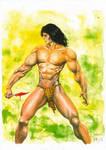 Tarzan Pin-up