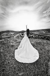 Daedalus bride by luez2