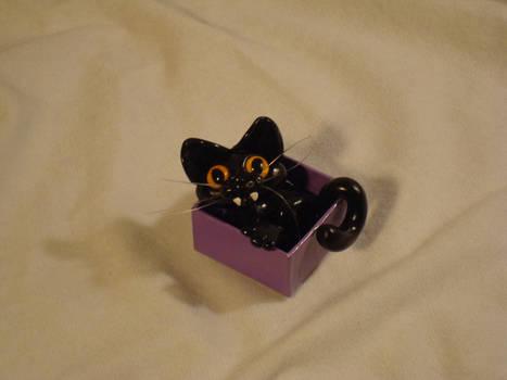 Basement Cat Iz Pleased
