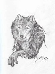 Wolf Portrait by sandrabong