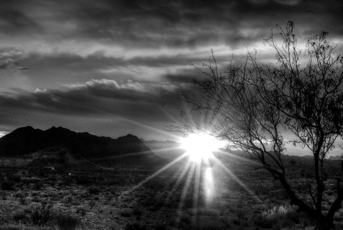 Monochrome Sunburst by Wethrildae