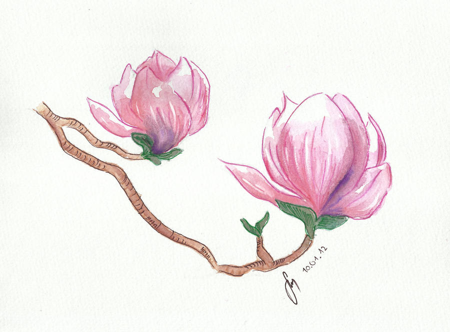 how to draw sakura flower