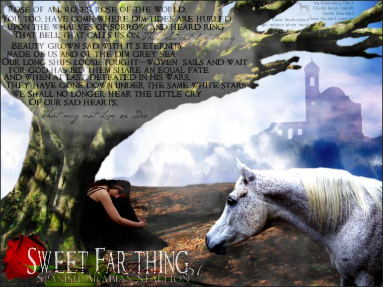 sweet far thing by sabriel