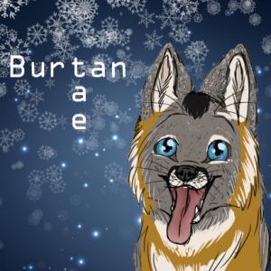 BurtanTae's Profile Picture