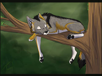 A good day's rest - by Fecu by BurtanTae