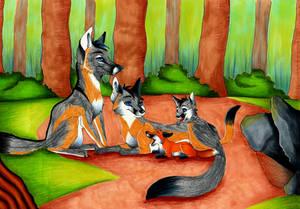 Fox Family Adoption by Figofox