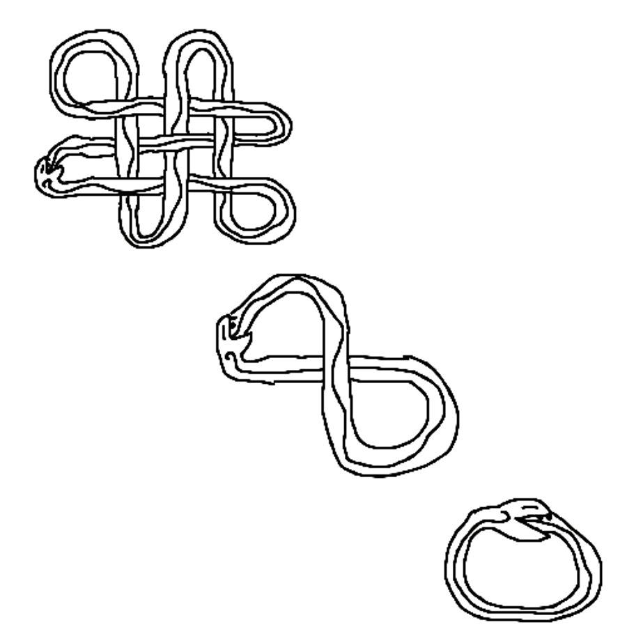 Celtic symbol snake eats self by chaenne on deviantart celtic symbol snake eats self by chaenne biocorpaavc