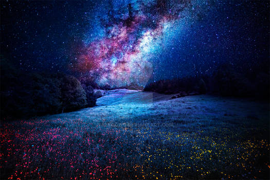 Milky Way on my Dream.