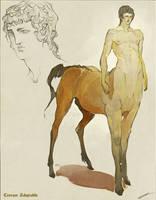 Adoptable - Centaur (Closed) by IJKelly