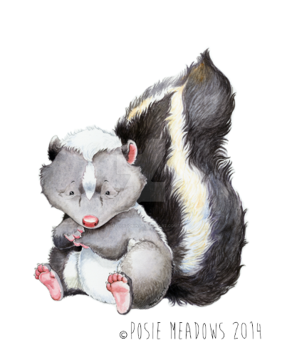 Morel the baby skunk by Shalladdrin