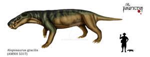 Aloposaurus gracilis