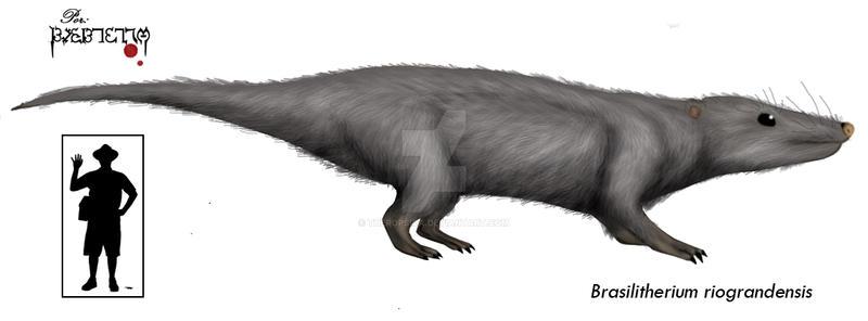 Brasilitherium riograndensis by Theropsida