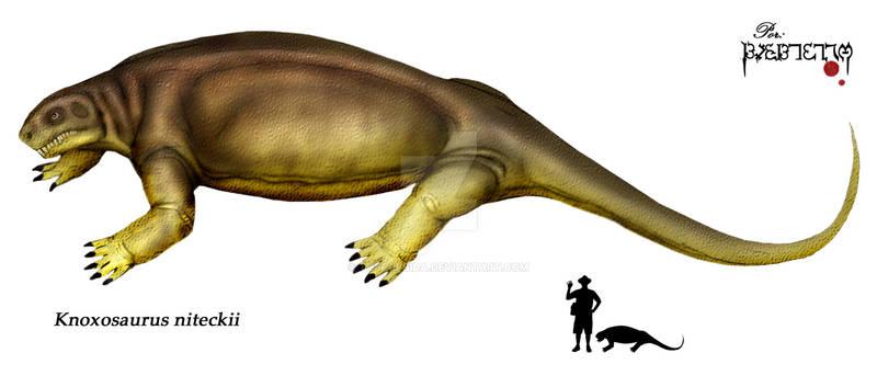 Knoxosaurus niteckii