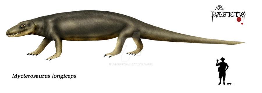 Mycterosaurus longiceps