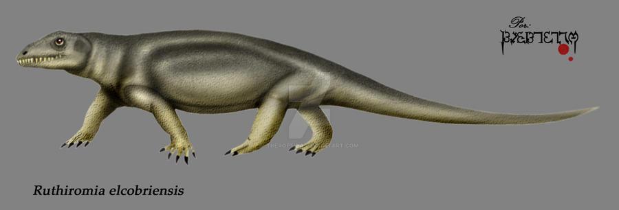 Ruthiromia elcobriensis
