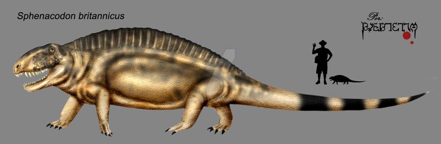 Sphenacodon britannicus