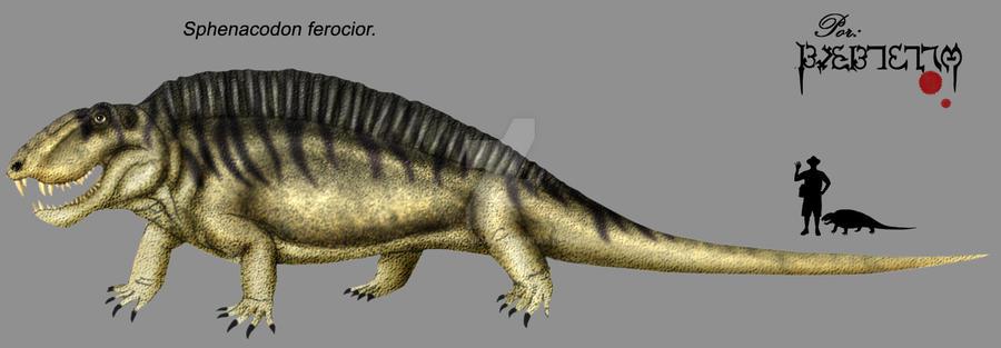 Sphenacodon ferocior