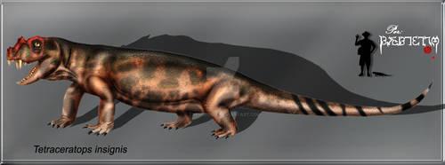 Tetraceratops  insignis
