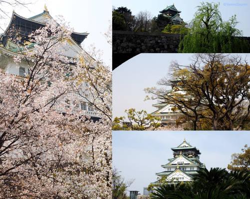 Osaka-jo, 4 different views.