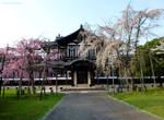 National Museum Buddhist Art Library