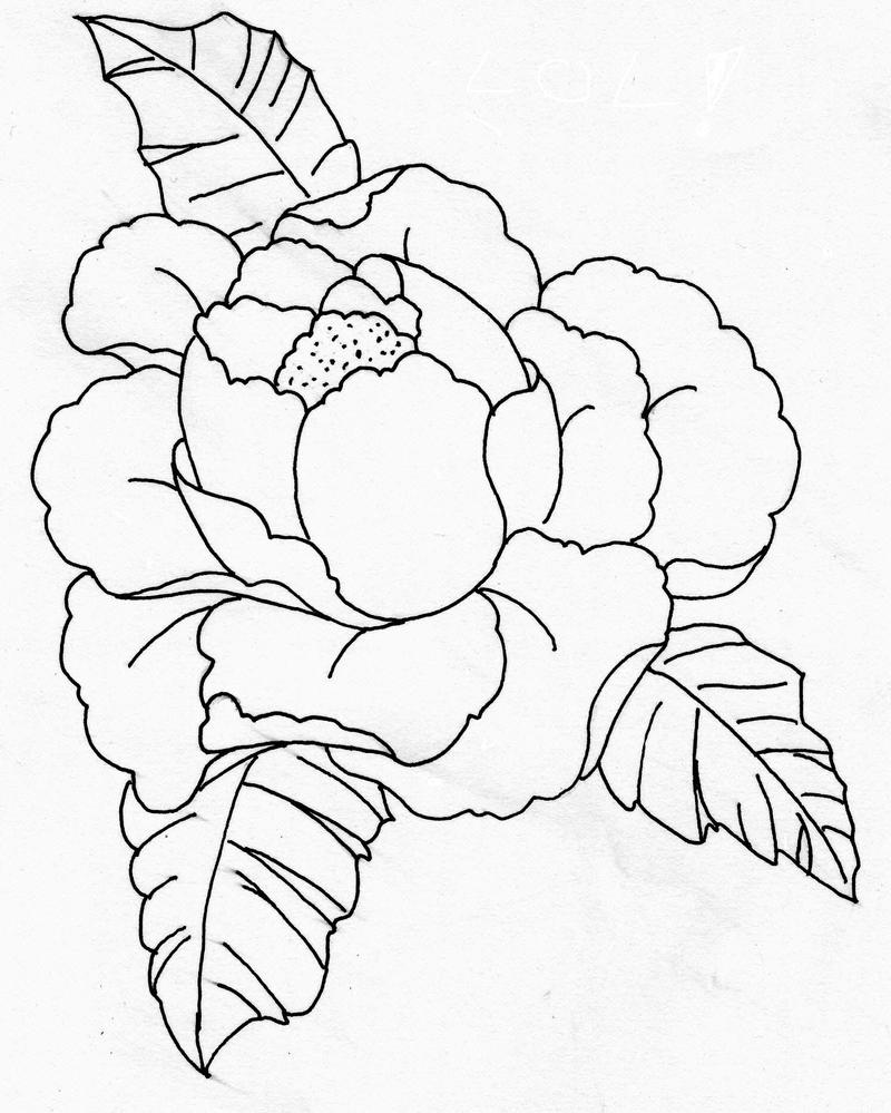 Galleries Related: Open Rose Drawing , Open Rose Drawing Outline ,