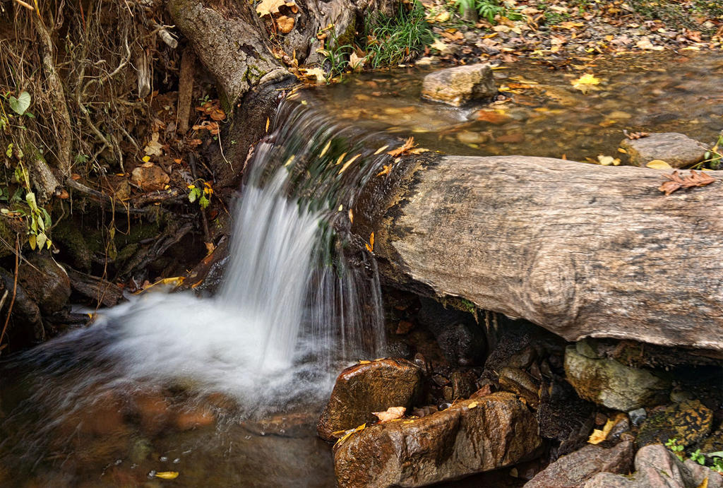 A Small Fall at Parfrey's by papatheo