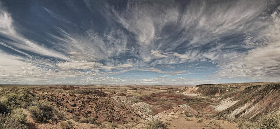 Painted Desert Morning by papatheo