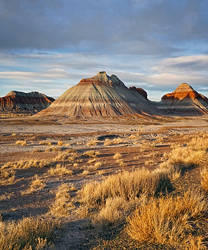 Evening at Painted Desert