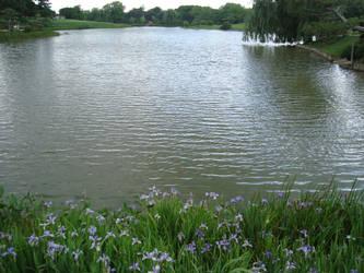 Lake View 2 by itsayskeds