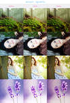 Action 14 - Sunny effect by LoMiTa
