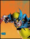 Wolverine's Fury
