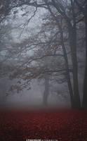 Mind Mist by MsVanum