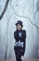 Fog show by MsVanum