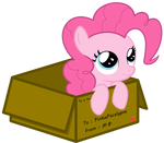 Pinkie Delivery