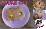 Coookie Cat